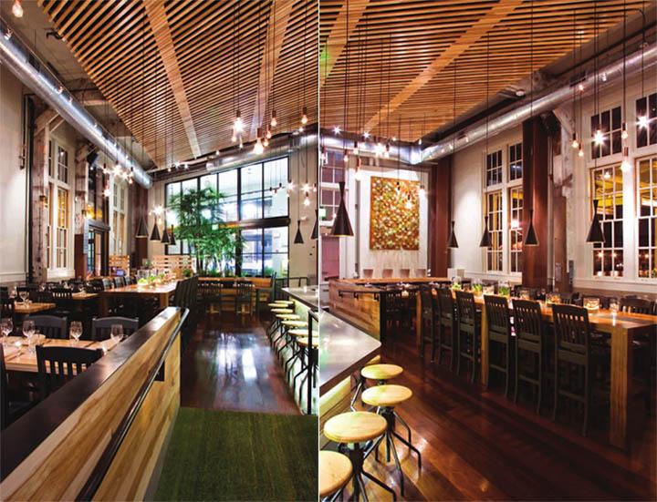 Thiết kế nội thất quán cafe hữu cơ