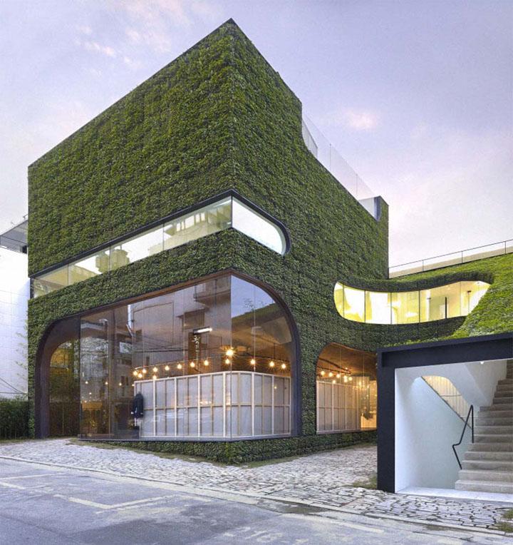 Công trình được bao phủ bởi cây xanh