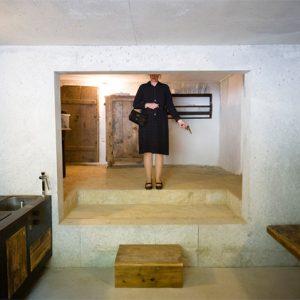 Cấu trúc hộp trong hộp được sử dụng trong cải tạo nhà cũ trang trại Celia