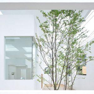 Thiết kế nhà ở hiện đại có cách bố trí rất khác biệt