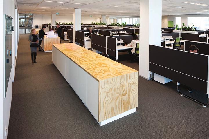 Downer  Edi Mining – Cây xanh trong thiết kế văn phòng làm việc 4
