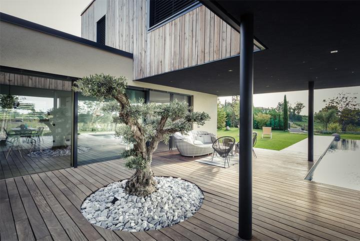 M House - Thiết kế biệt thự tận dụng không gian cây xanh trong nhà 5