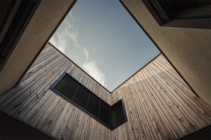 M House - Thiết kế biệt thự tận dụng không gian cây xanh trong nhà 3