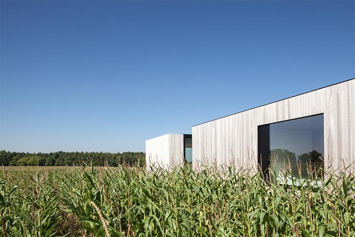 Một căn nhà gần gũi với thiên nhiên sẽ khiến bạn thoải mái và vui vẻ hơn