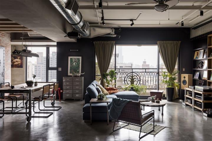 Mẫu thiết kế căn hộ loft đẹp dành cho mèo và chủ của chúng 2